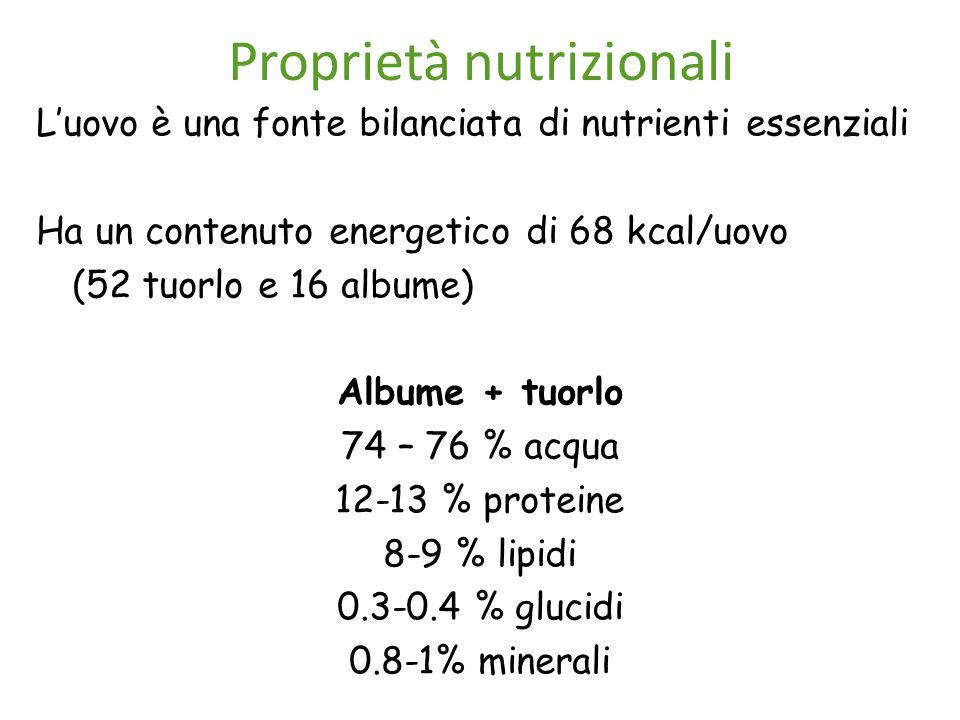Proprietà nutrizionali L'uovo è una fonte bilanciata di nutrienti essenziali Ha un contenuto energetico di 68 kcal/uovo (52 tuorlo e 16 albume) Albume + tuorlo 74 – 76 % acqua 12-13 % proteine 8-9 % lipidi 0.3-0.4 % glucidi 0.8-1% minerali