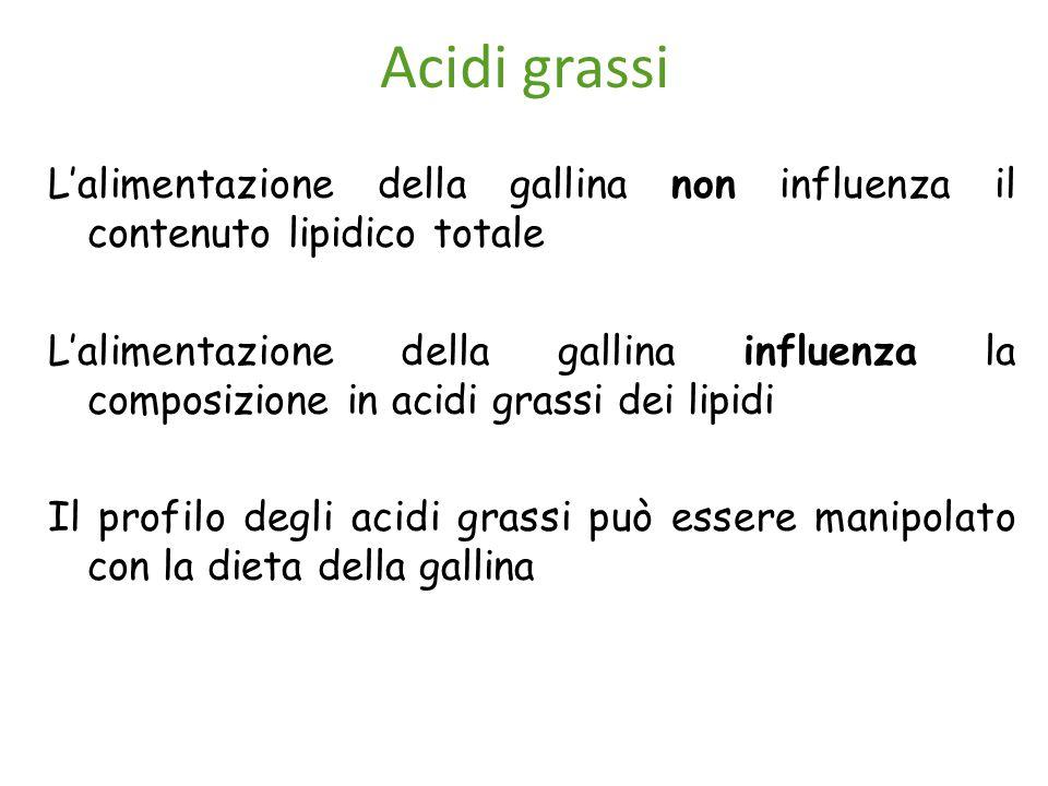 Acidi grassi L'alimentazione della gallina non influenza il contenuto lipidico totale L'alimentazione della gallina influenza la composizione in acidi grassi dei lipidi Il profilo degli acidi grassi può essere manipolato con la dieta della gallina