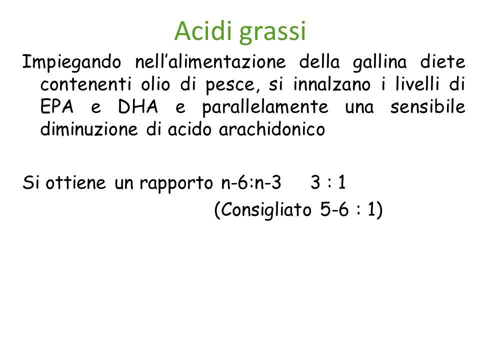 Acidi grassi Impiegando nell'alimentazione della gallina diete contenenti olio di pesce, si innalzano i livelli di EPA e DHA e parallelamente una sensibile diminuzione di acido arachidonico Si ottiene un rapporto n-6:n-3 3 : 1 (Consigliato 5-6 : 1)