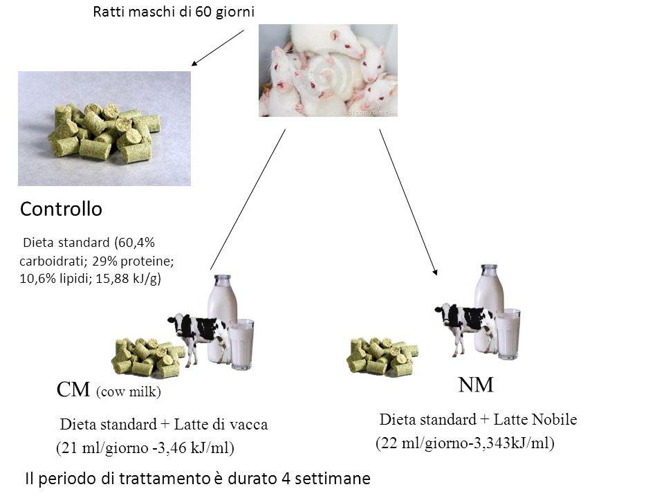 Ratti maschi di 60 giorni Controllo Dieta standard (60,4% carboidrati; 29% proteine; 10,6% lipidi; 15,88 kJ/g) Il periodo di trattamento è durato 4 se
