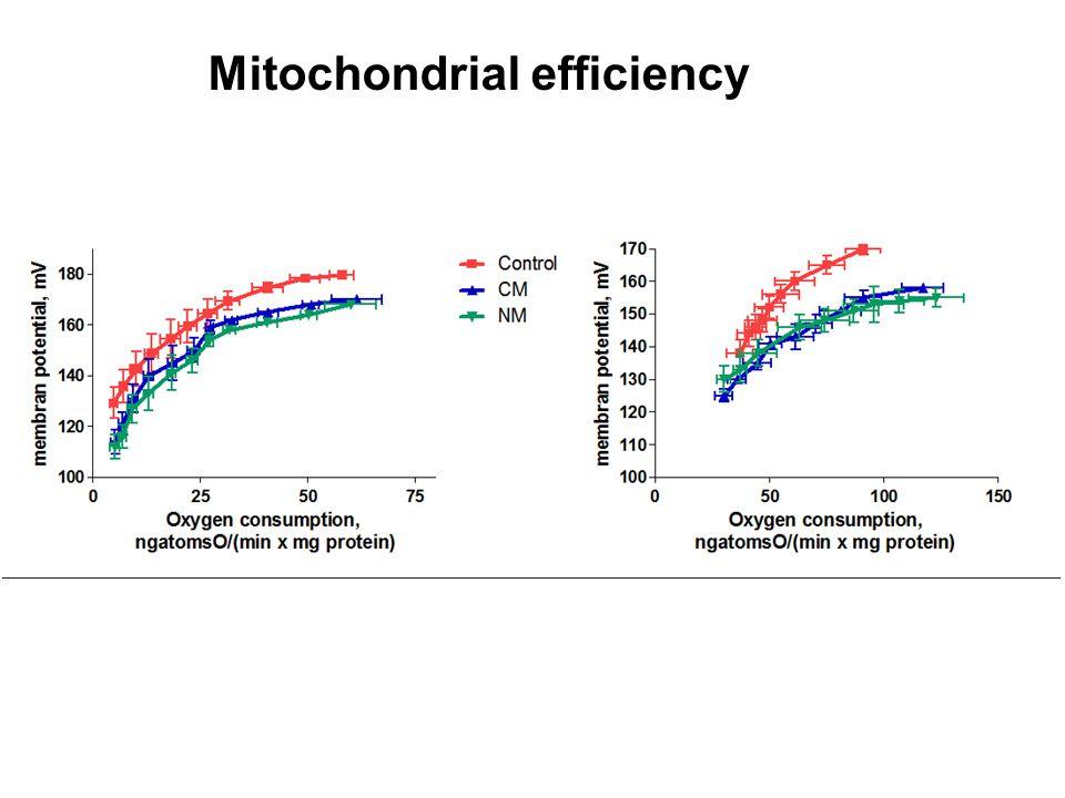 Mitochondrial efficiency
