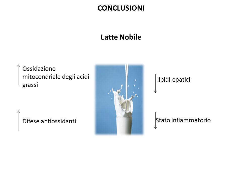 CONCLUSIONI Latte Nobile Stato infiammatorio lipidi epatici Ossidazione mitocondriale degli acidi grassi Difese antiossidanti