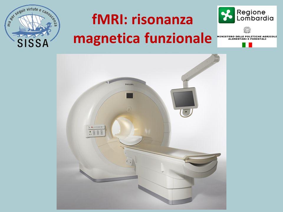 fMRI: risonanza magnetica funzionale
