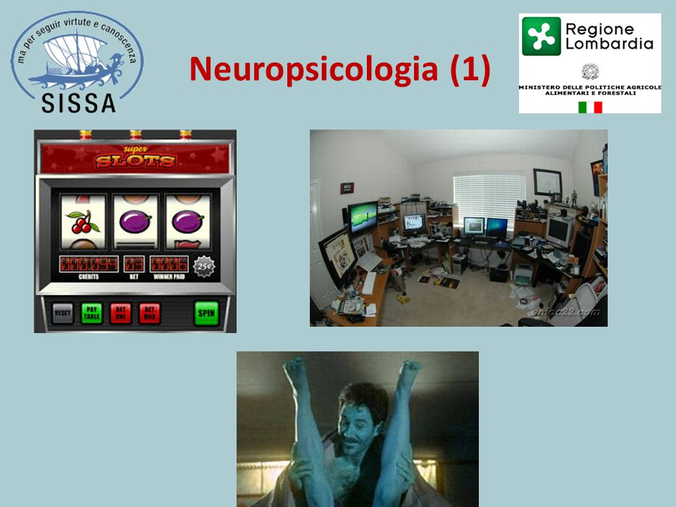 Neuropsicologia (1)