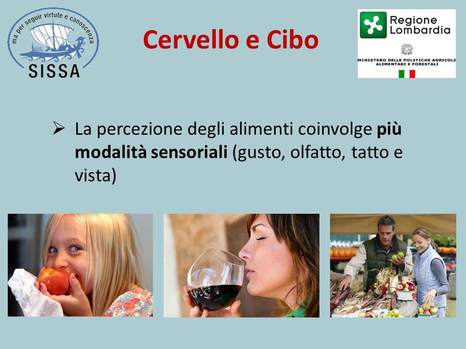  La percezione degli alimenti coinvolge più modalità sensoriali (gusto, olfatto, tatto e vista) Cervello e Cibo