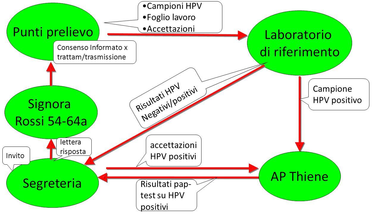 Punti prelievo Laboratorio di riferimento Segreteria Invito Campioni HPV Foglio lavoro Accettazioni Consenso Informato x trattam/trasmissione AP Thiene Campione HPV positivo Risultati pap- test su HPV positivi Signora Rossi 54-64a Risultati HPV Negativi/positivi lettera risposta accettazioni HPV positivi