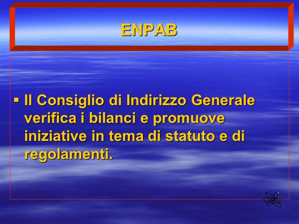ENPAB  Il Consiglio di Indirizzo Generale verifica i bilanci e promuove iniziative in tema di statuto e di regolamenti.