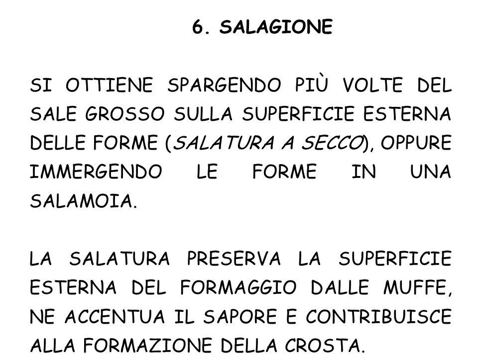 6. SALAGIONE SI OTTIENE SPARGENDO PIÙ VOLTE DEL SALE GROSSO SULLA SUPERFICIE ESTERNA DELLE FORME (SALATURA A SECCO), OPPURE IMMERGENDO LE FORME IN UNA