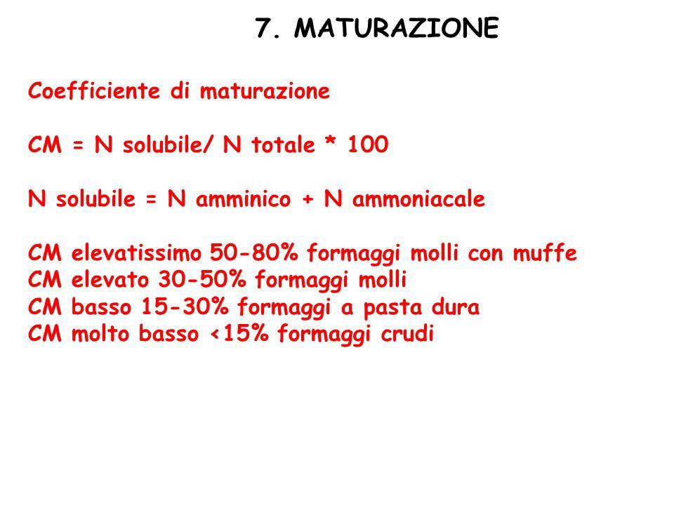 7. MATURAZIONE Coefficiente di maturazione CM = N solubile/ N totale * 100 N solubile = N amminico + N ammoniacale CM elevatissimo 50-80% formaggi mol