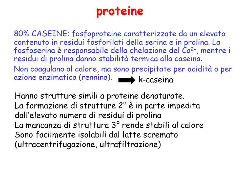 Si distinguono in , , k ,  caseine danno aggregati in presenza di Ca2+ La k-caseina è l'unica glicosilata, è resistente all'aggregazione E' costituita da 2 porzioni -C-terminale, idrofila, A.A.