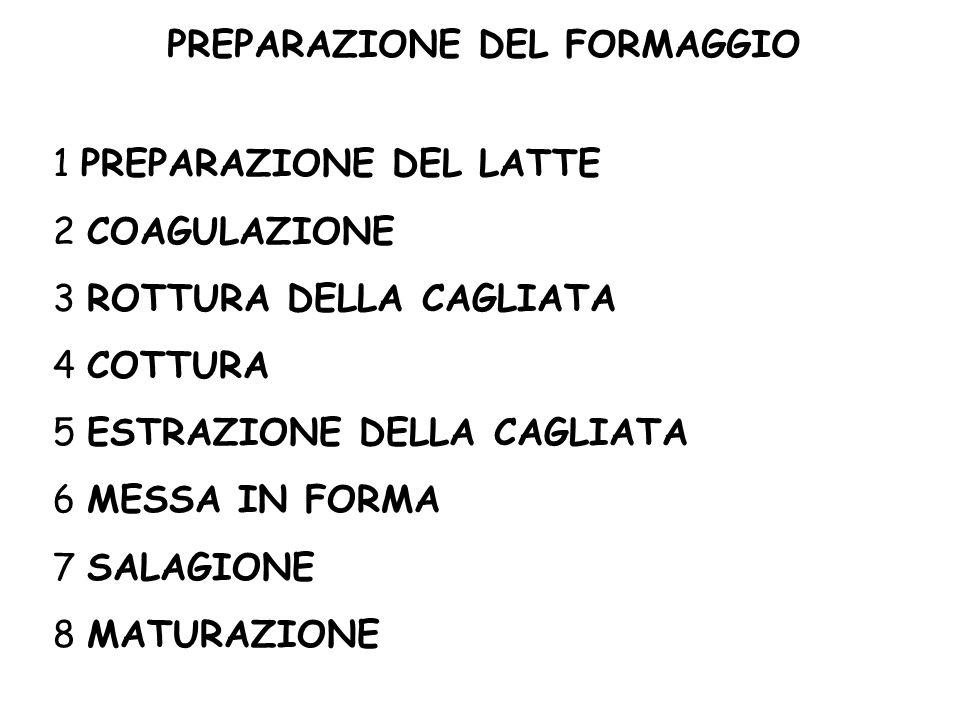 1 PREPARAZIONE DEL LATTE 2 COAGULAZIONE 3 ROTTURA DELLA CAGLIATA 4 COTTURA 5 ESTRAZIONE DELLA CAGLIATA 6 MESSA IN FORMA 7 SALAGIONE 8 MATURAZIONE PREP