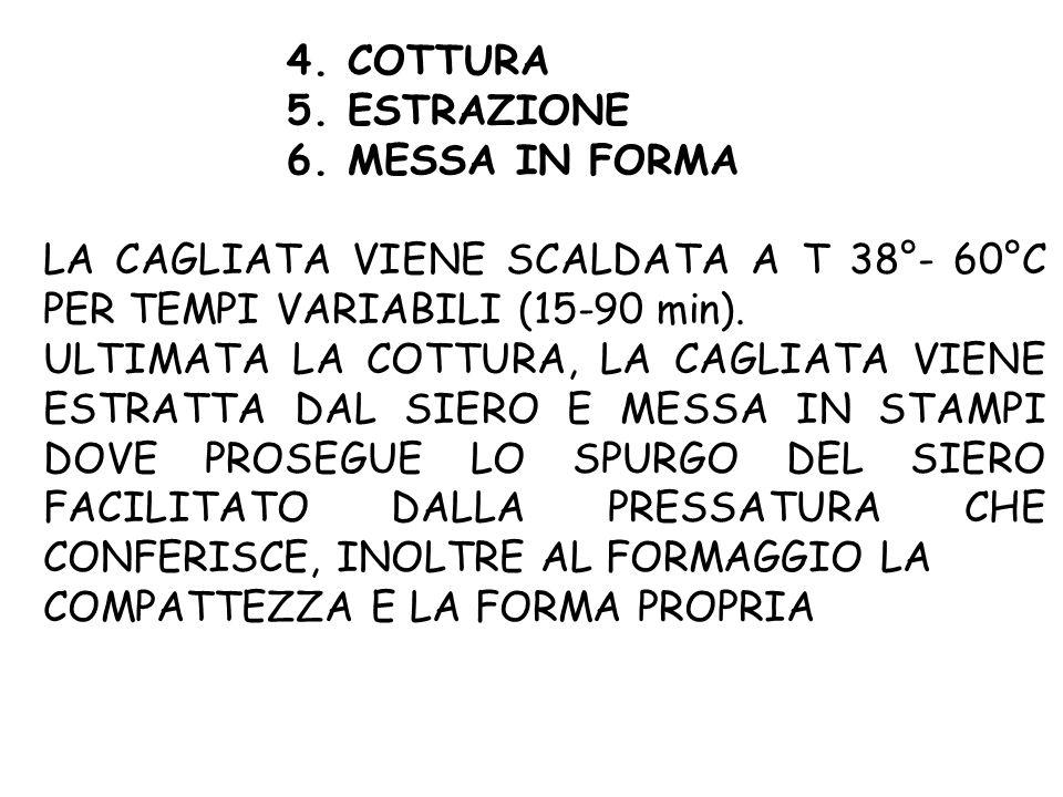 4. COTTURA 5. ESTRAZIONE 6. MESSA IN FORMA LA CAGLIATA VIENE SCALDATA A T 38°- 60°C PER TEMPI VARIABILI (15-90 min). ULTIMATA LA COTTURA, LA CAGLIATA