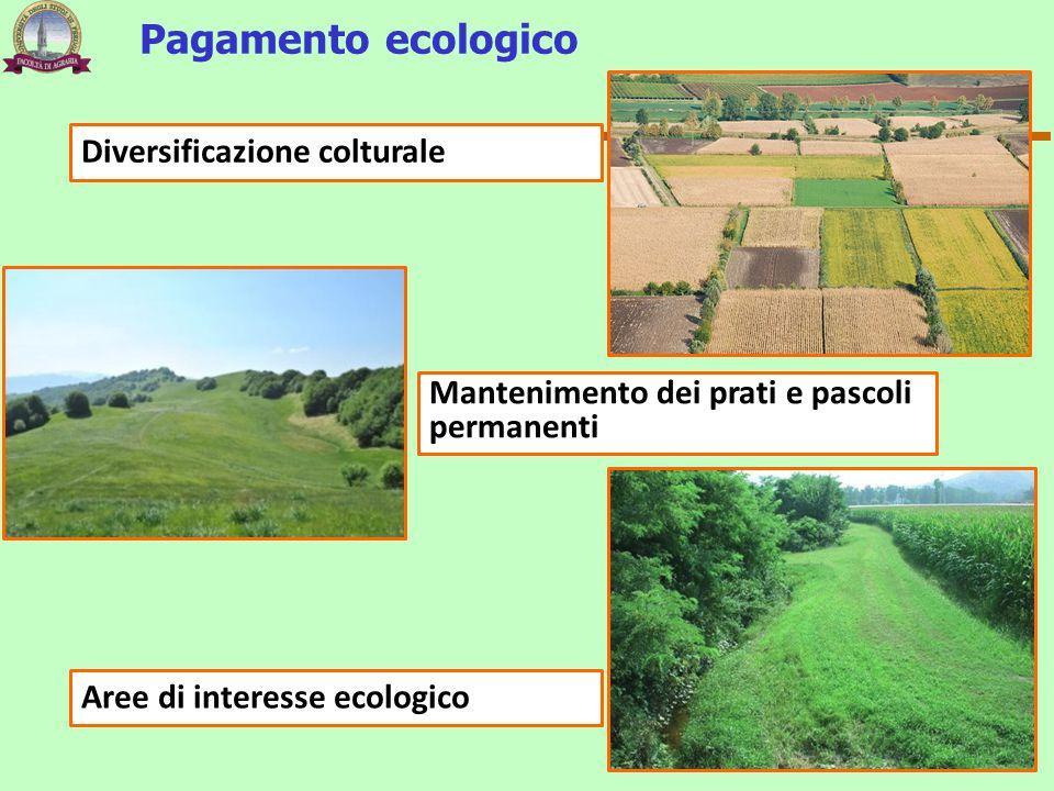 Diversificazione colturale Mantenimento dei prati e pascoli permanenti Aree di interesse ecologico Pagamento ecologico