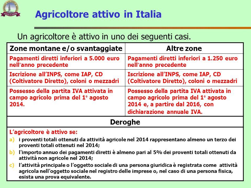 Agricoltore attivo in Italia Zone montane e/o svantaggiateAltre zone Pagamenti diretti inferiori a 5.000 euro nell'anno precedente Pagamenti diretti i