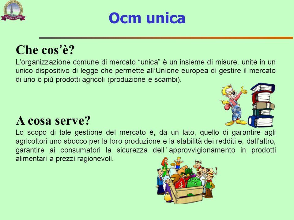 """Che cos'è? L'organizzazione comune di mercato """"unica"""" è un insieme di misure, unite in un unico dispositivo di legge che permette all'Unione europea d"""