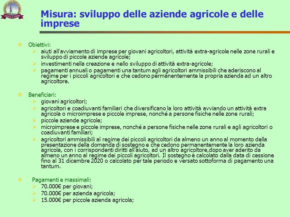 Misura: sviluppo delle aziende agricole e delle imprese  Obiettivi:  aiuti all'avviamento di imprese per giovani agricoltori, attività extra-agricol