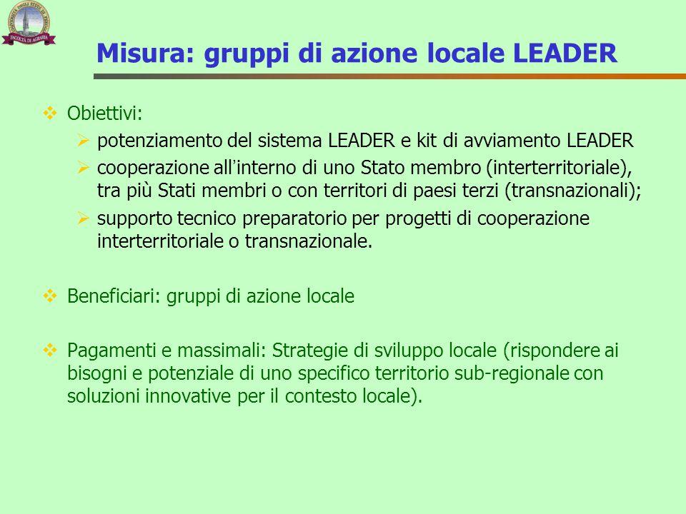 Misura: gruppi di azione locale LEADER  Obiettivi:  potenziamento del sistema LEADER e kit di avviamento LEADER  cooperazione all'interno di uno St
