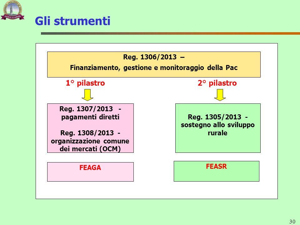 Gli strumenti 30 1° pilastro2° pilastro Reg. 1305/2013 - sostegno allo sviluppo rurale Reg. 1307/2013 - pagamenti diretti Reg. 1308/2013 - organizzazi