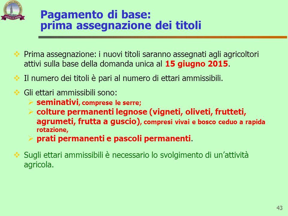 Pagamento di base: prima assegnazione dei titoli  Prima assegnazione: i nuovi titoli saranno assegnati agli agricoltori attivi sulla base della doman