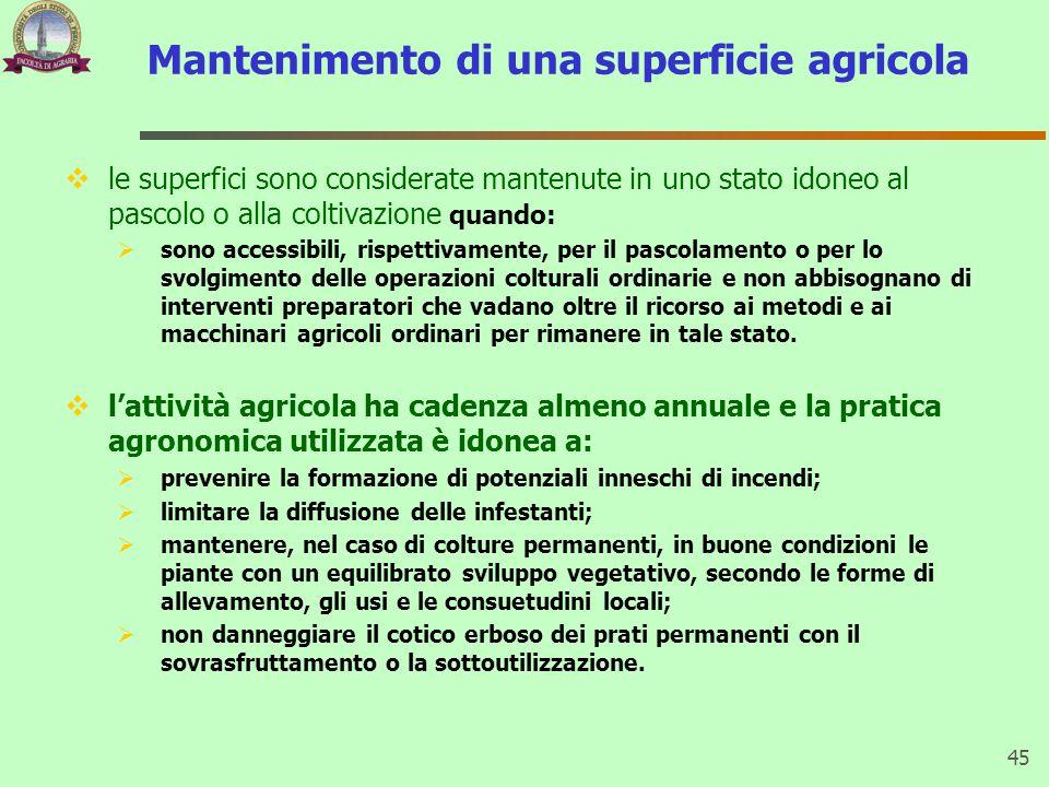 Mantenimento di una superficie agricola  le superfici sono considerate mantenute in uno stato idoneo al pascolo o alla coltivazione quando:  sono ac