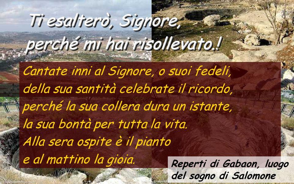 Cantate inni al Signore, o suoi fedeli, della sua santità celebrate il ricordo, perché la sua collera dura un istante, la sua bontà per tutta la vita.