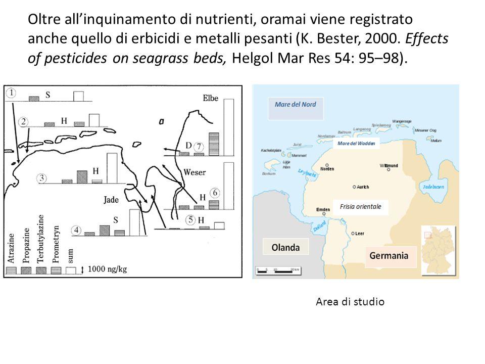 Oltre all'inquinamento di nutrienti, oramai viene registrato anche quello di erbicidi e metalli pesanti (K. Bester, 2000. Effects of pesticides on sea
