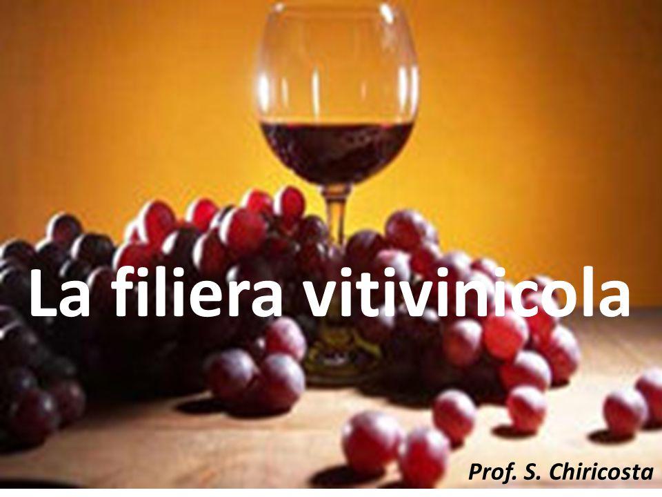 La filiera vitivinicola Lo zucchero presente in un mosto viene trasformato in alcool, durante il processo fermentativo, come risulta dai seguenti calcoli, con valori in grammi corrispondenti alle moli : C 6 H 12 0 6 - 2 C 2 H 5 OH +2 CO 2 +56 Kcal 180g 92g 88g Da questi valori, espressi in grammi, si può ricavare: 180g : 92g = 1g : Xg Xg = 92g x 1 g = 0,51 g 180 g