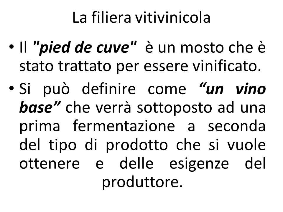 Il pied de cuve è un mosto che è stato trattato per essere vinificato.