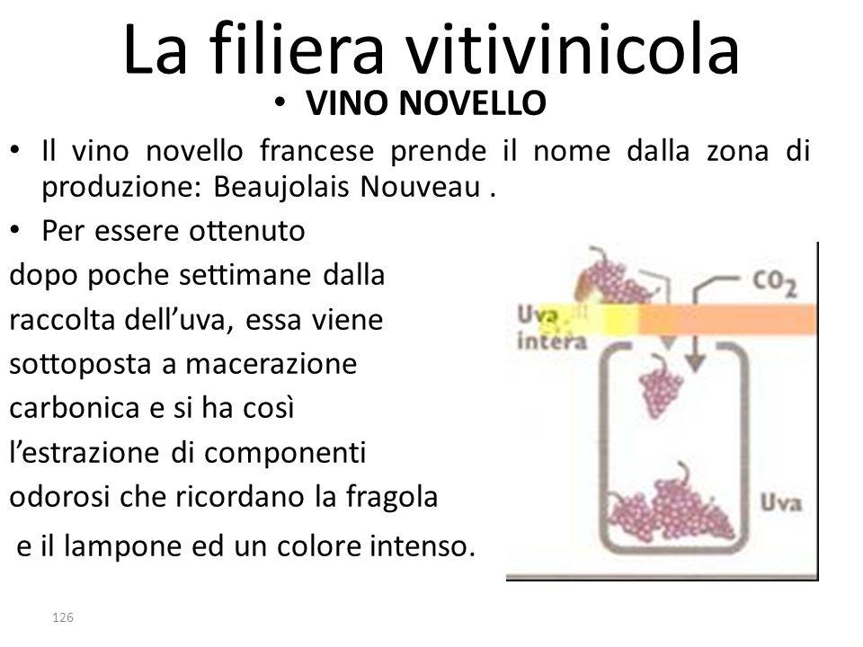 La filiera vitivinicola VINO NOVELLO Il vino novello francese prende il nome dalla zona di produzione: Beaujolais Nouveau. Per essere ottenuto dopo po