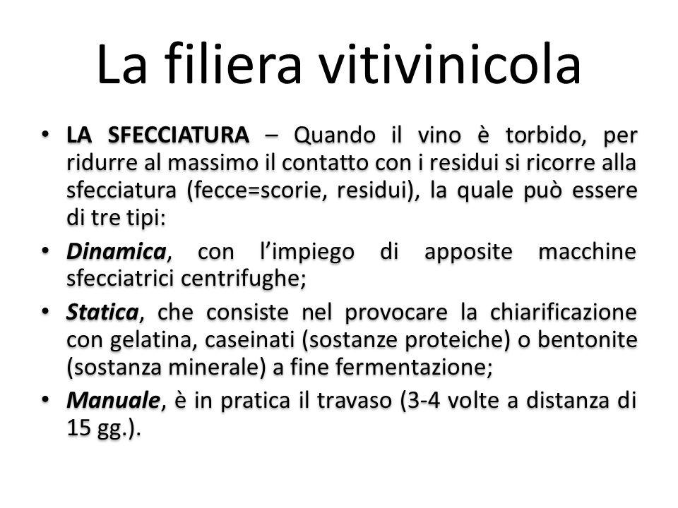 La filiera vitivinicola LA SFECCIATURA – Quando il vino è torbido, per ridurre al massimo il contatto con i residui si ricorre alla sfecciatura (fecce
