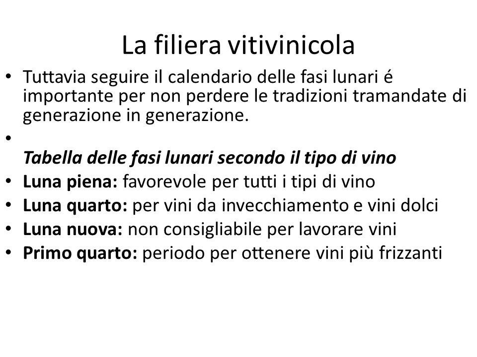 La filiera vitivinicola Tuttavia seguire il calendario delle fasi lunari é importante per non perdere le tradizioni tramandate di generazione in gener