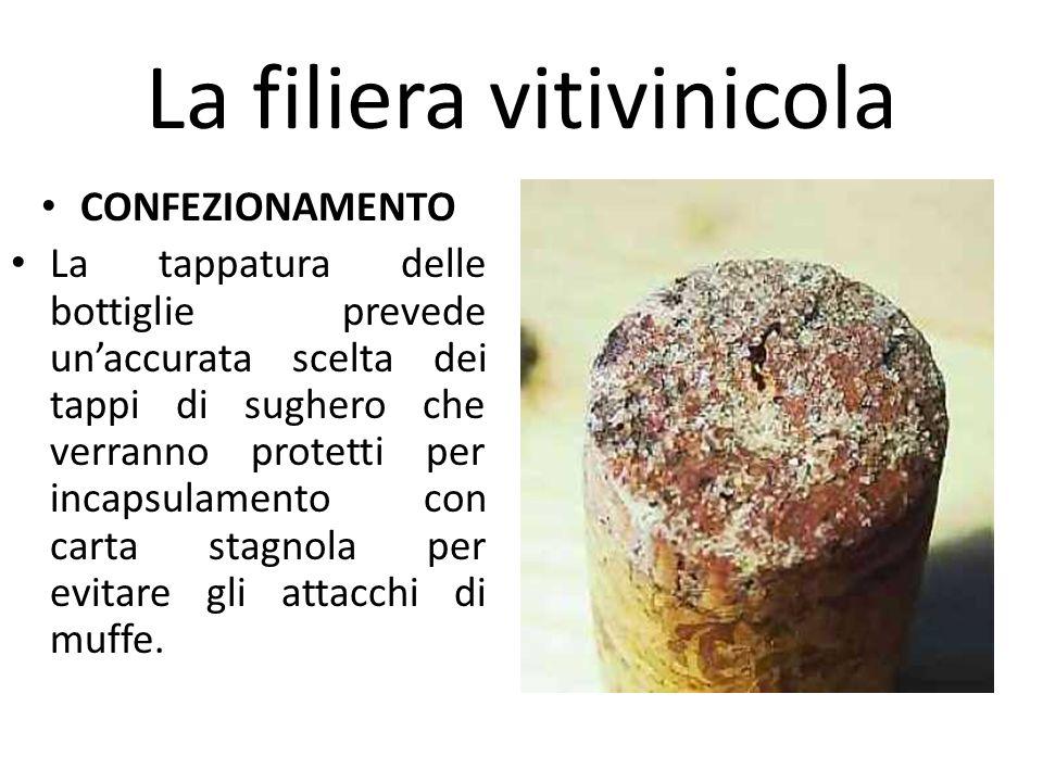 La filiera vitivinicola CONFEZIONAMENTO La tappatura delle bottiglie prevede un'accurata scelta dei tappi di sughero che verranno protetti per incapsu