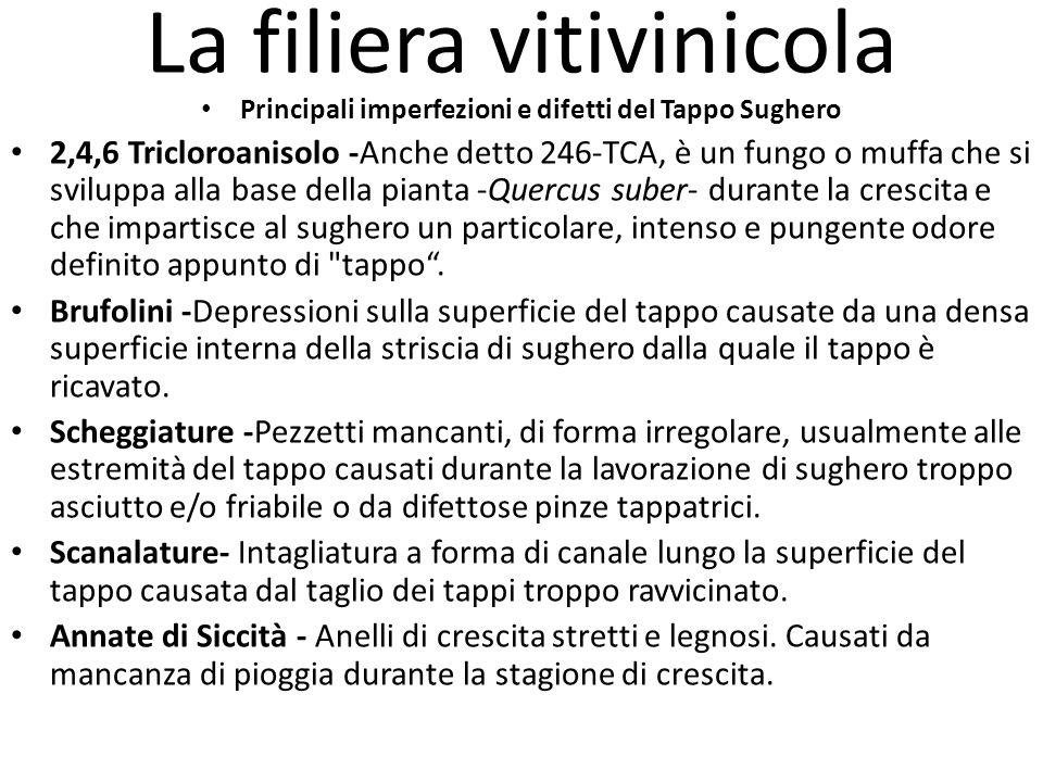 La filiera vitivinicola Principali imperfezioni e difetti del Tappo Sughero 2,4,6 Tricloroanisolo -Anche detto 246-TCA, è un fungo o muffa che si svil