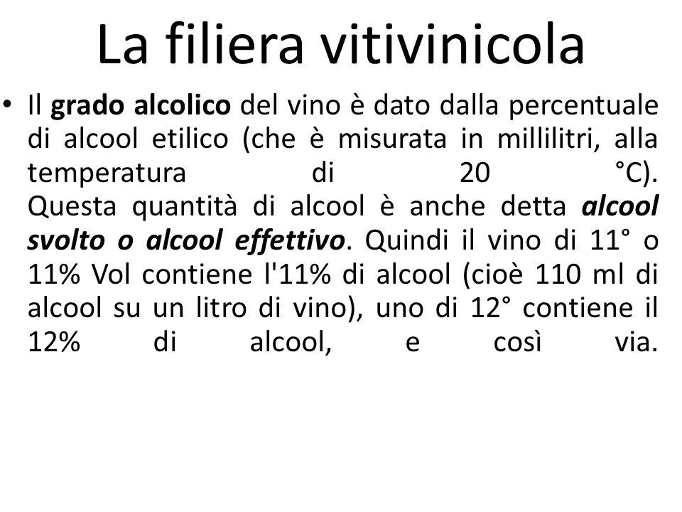La filiera vitivinicola Il grado alcolico del vino è dato dalla percentuale di alcool etilico (che è misurata in millilitri, alla temperatura di 20 °C