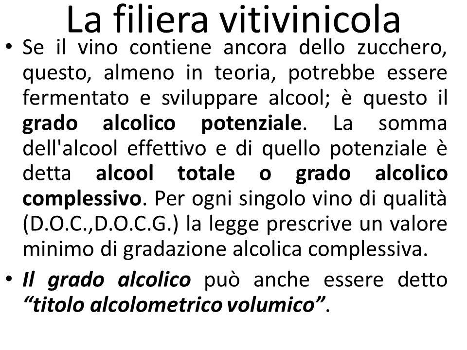 La filiera vitivinicola Se il vino contiene ancora dello zucchero, questo, almeno in teoria, potrebbe essere fermentato e sviluppare alcool; è questo