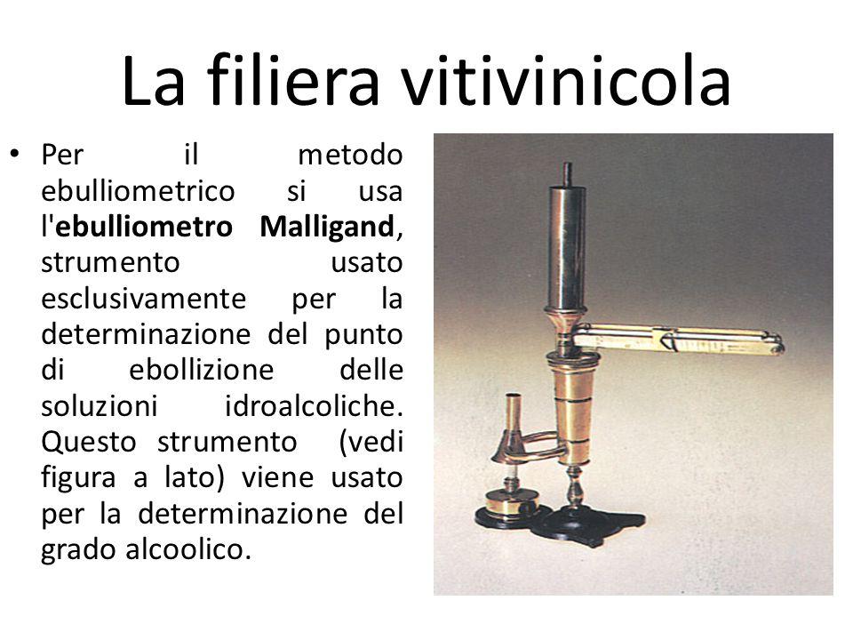 La filiera vitivinicola Per il metodo ebulliometrico si usa l'ebulliometro Malligand, strumento usato esclusivamente per la determinazione del punto d