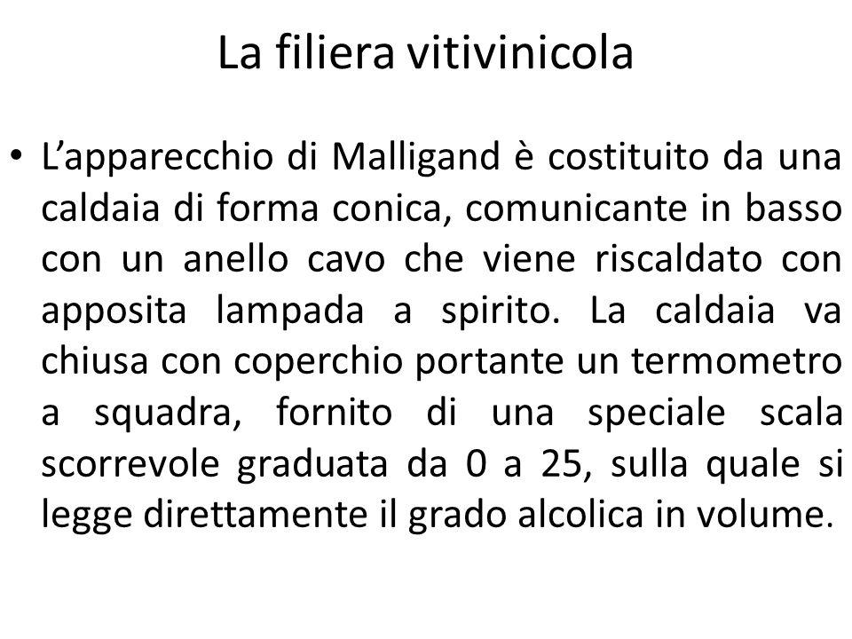 La filiera vitivinicola L'apparecchio di Malligand è costituito da una caldaia di forma conica, comunicante in basso con un anello cavo che viene risc