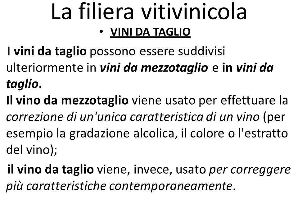 La filiera vitivinicola VINI DA TAGLIO I vini da taglio possono essere suddivisi ulteriormente in vini da mezzotaglio e in vini da taglio. Il vino da