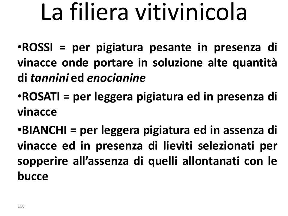 La filiera vitivinicola ROSSI = per pigiatura pesante in presenza di vinacce onde portare in soluzione alte quantità di tannini ed enocianine ROSATI =