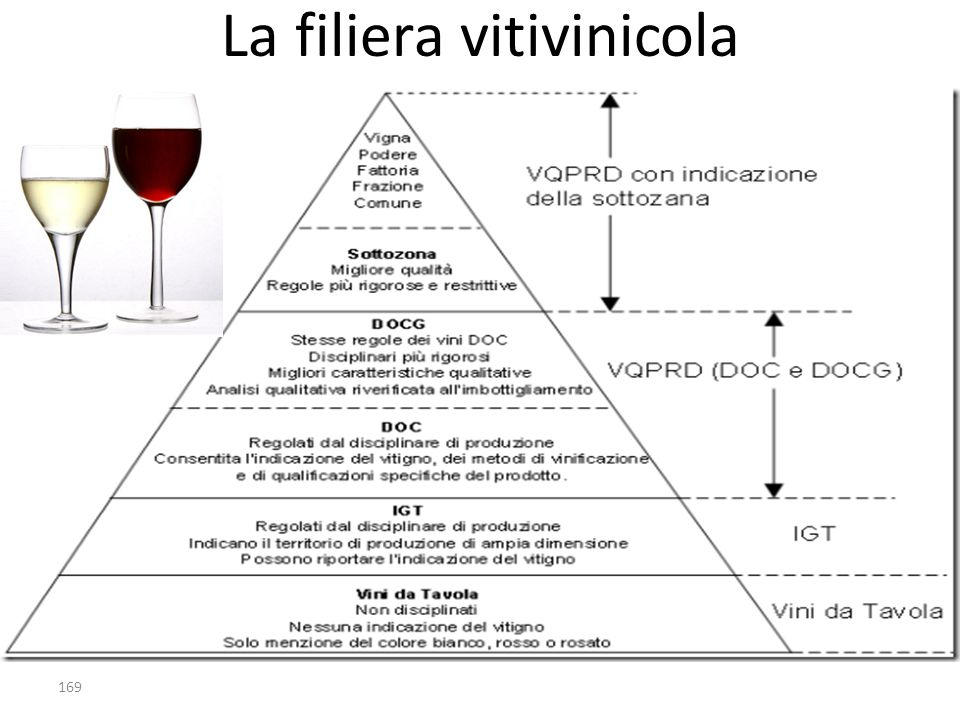 La filiera vitivinicola 169