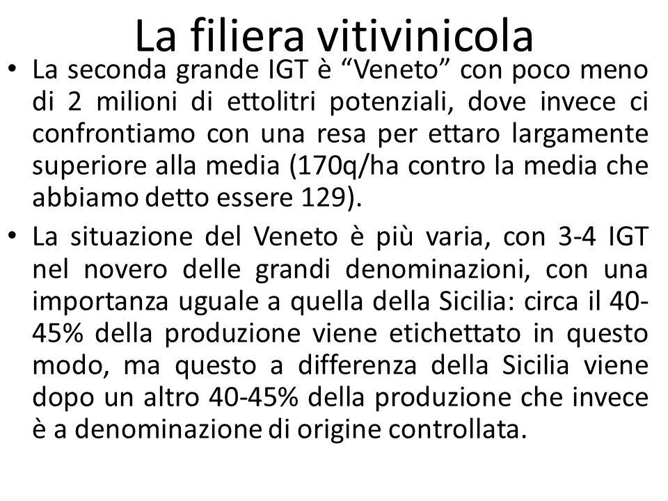 """La filiera vitivinicola La seconda grande IGT è """"Veneto"""" con poco meno di 2 milioni di ettolitri potenziali, dove invece ci confrontiamo con una resa"""