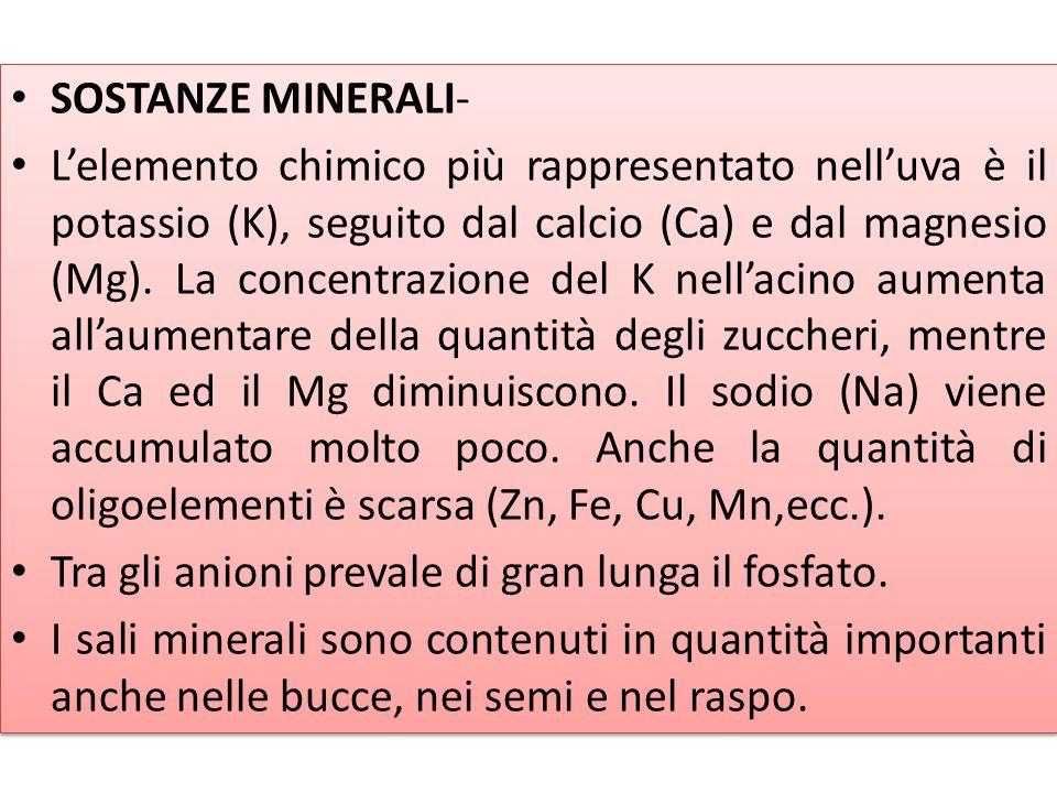 Prodotti e sottoprodotti della filiera vitivinicola SOSTANZE MINERALI- L'elemento chimico più rappresentato nell'uva è il potassio (K), seguito dal ca