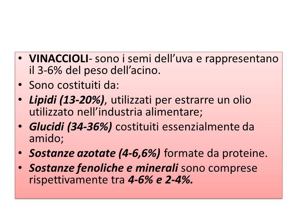 VINACCIOLI- sono i semi dell'uva e rappresentano il 3-6% del peso dell'acino. Sono costituiti da: Lipidi (13-20%), utilizzati per estrarre un olio uti
