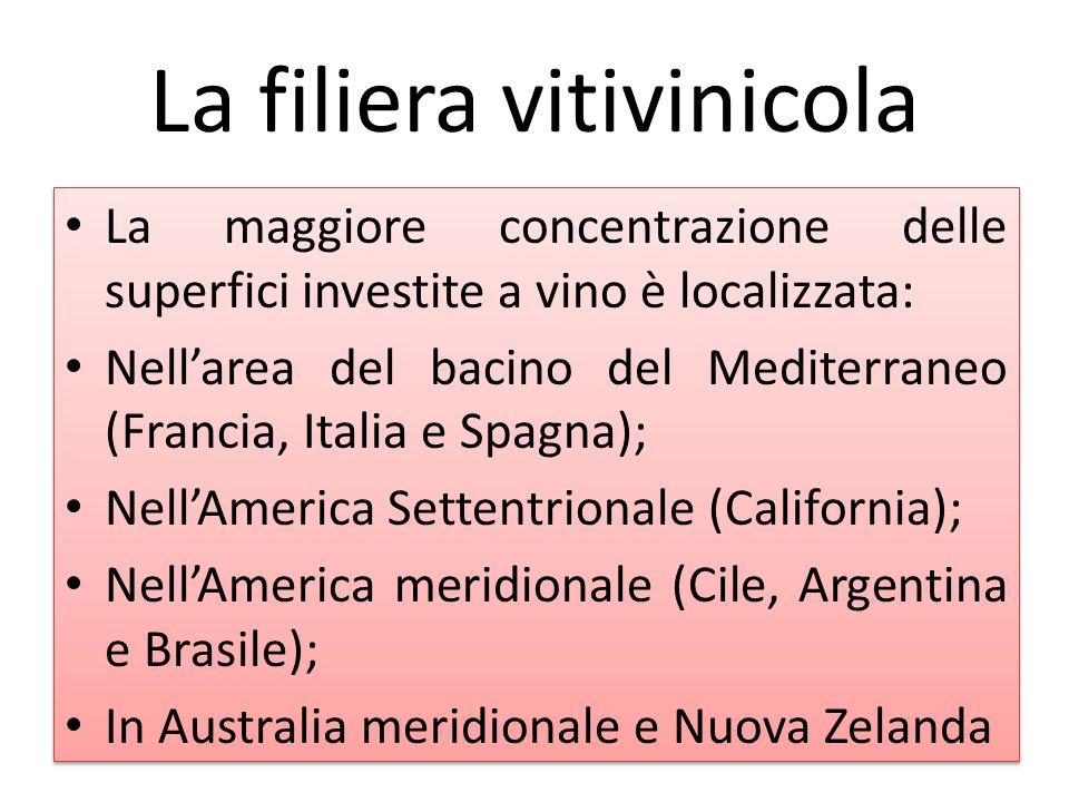 La filiera vitivinicola La maggiore concentrazione delle superfici investite a vino è localizzata: Nell'area del bacino del Mediterraneo (Francia, Ita