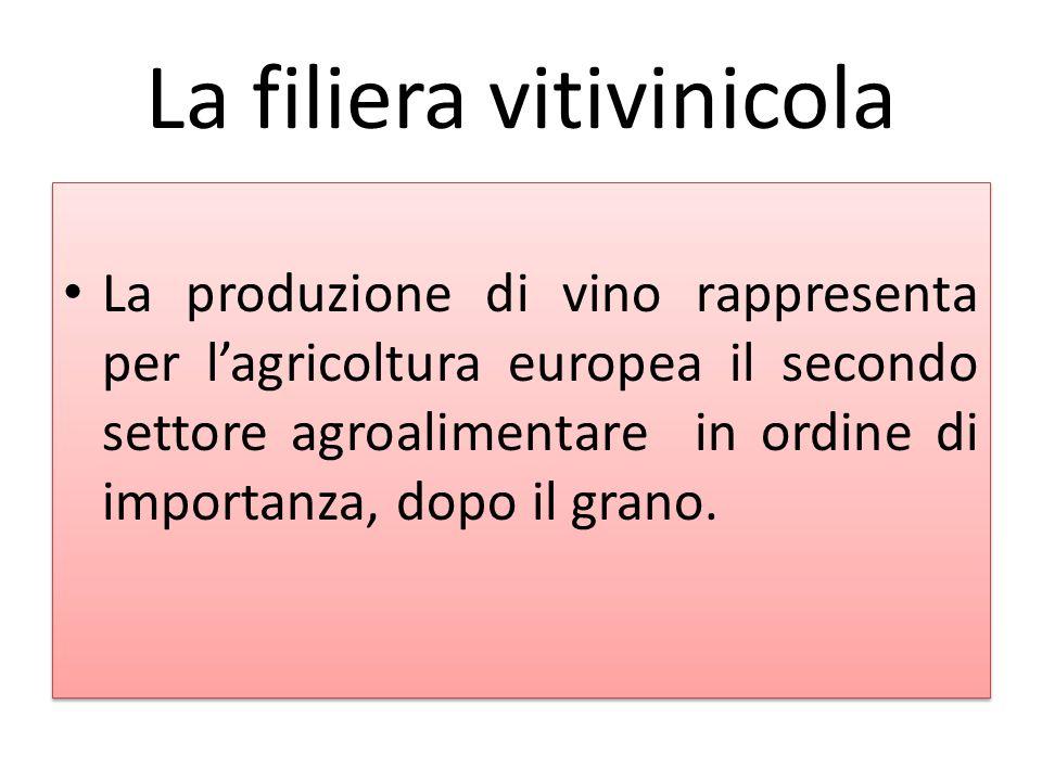 La filiera vitivinicola La produzione di vino rappresenta per l'agricoltura europea il secondo settore agroalimentare in ordine di importanza, dopo il