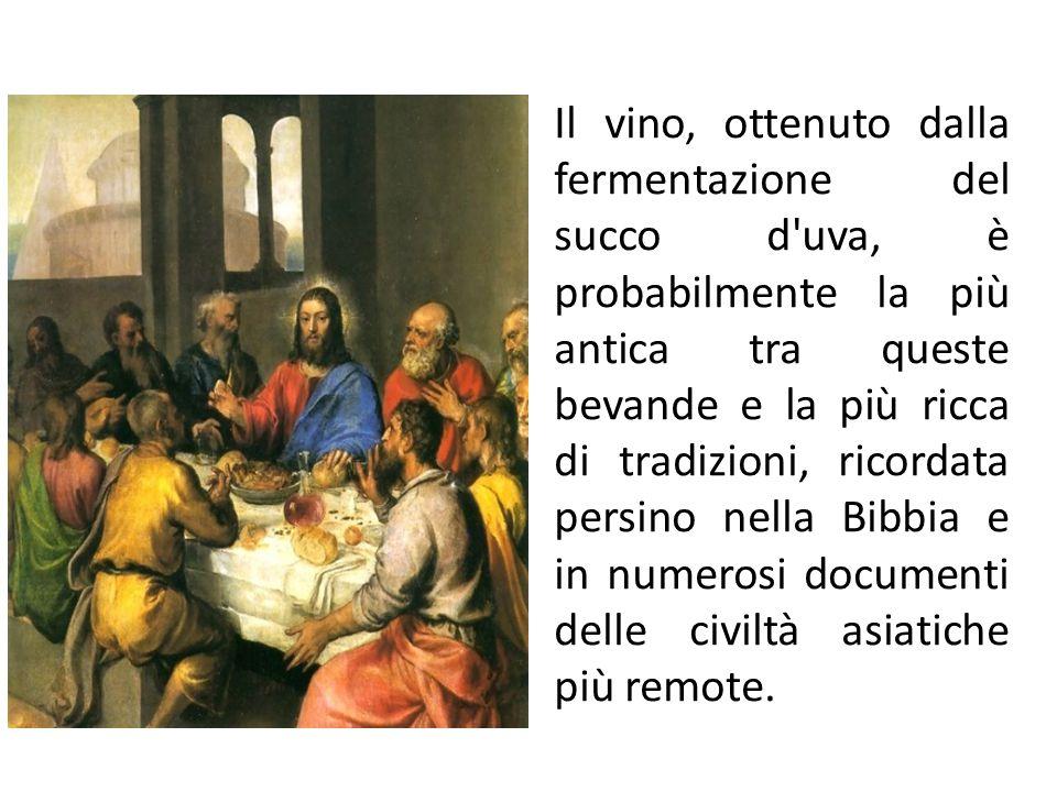 La filiera vitivinicola Denominazione vini DOC e V.Q.P.R.D Il regolamento comunitario n.