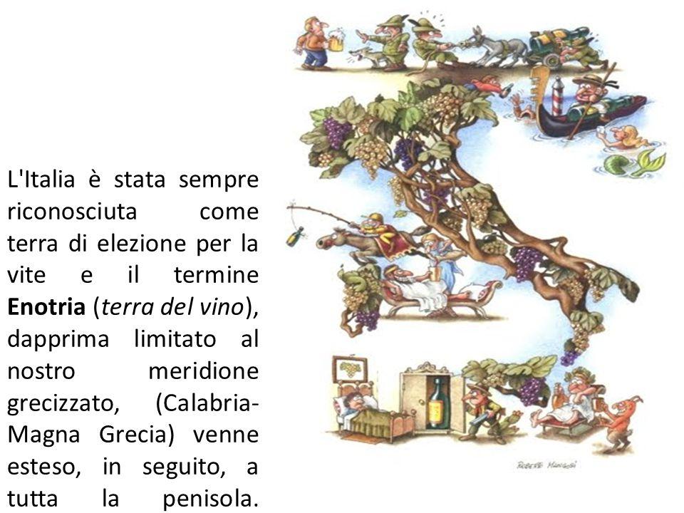 L'Italia è stata sempre riconosciuta come terra di elezione per la vite e il termine Enotria (terra del vino), dapprima limitato al nostro meridione g