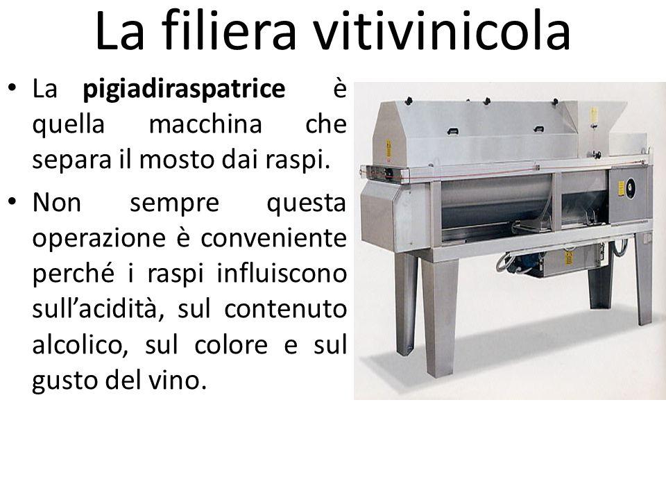 La filiera vitivinicola La pigiadiraspatrice è quella macchina che separa il mosto dai raspi. Non sempre questa operazione è conveniente perché i rasp