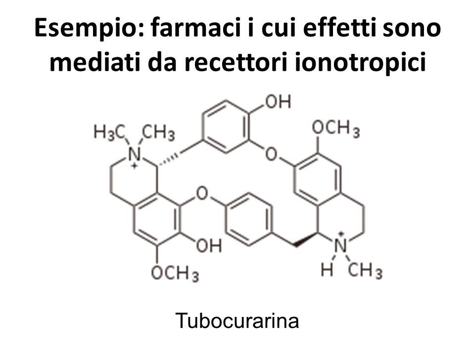 Esempio: farmaci i cui effetti sono mediati da recettori ionotropici Tubocurarina