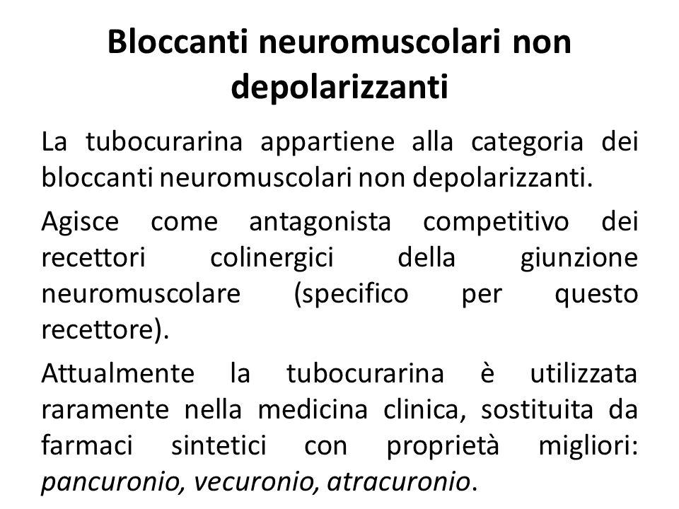 Bloccanti neuromuscolari non depolarizzanti La tubocurarina appartiene alla categoria dei bloccanti neuromuscolari non depolarizzanti. Agisce come ant